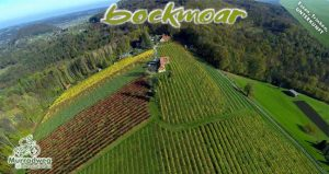 Gastgeber am Murradweg Buschenschank Wildon Bockmoar Weingut