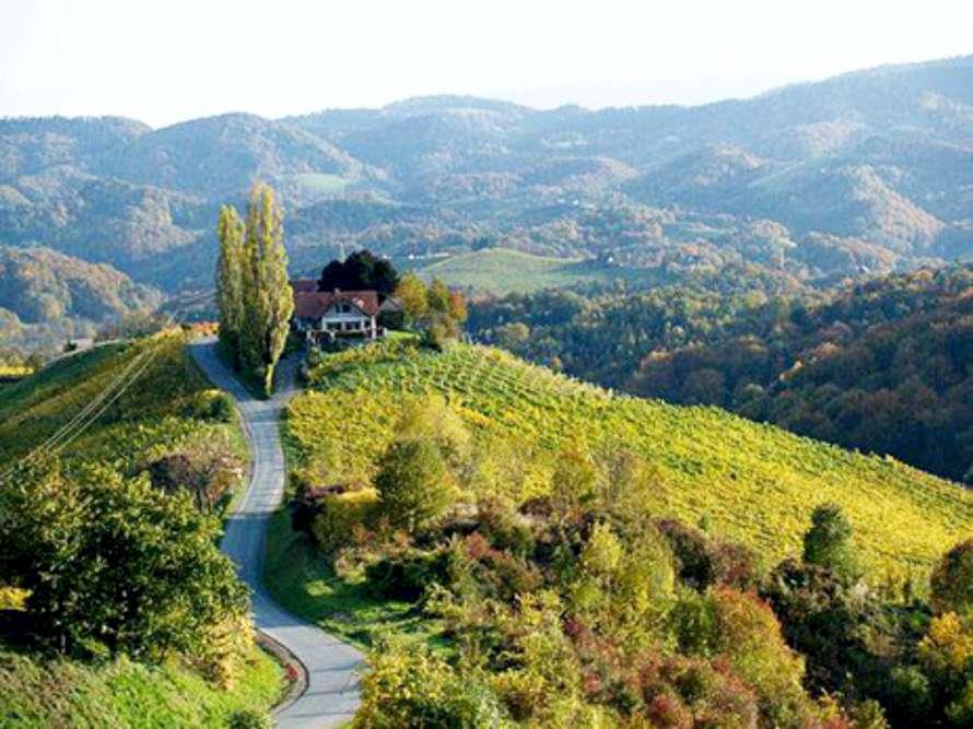 EIBENHOF Weingut Ausflugsziel Murradweg