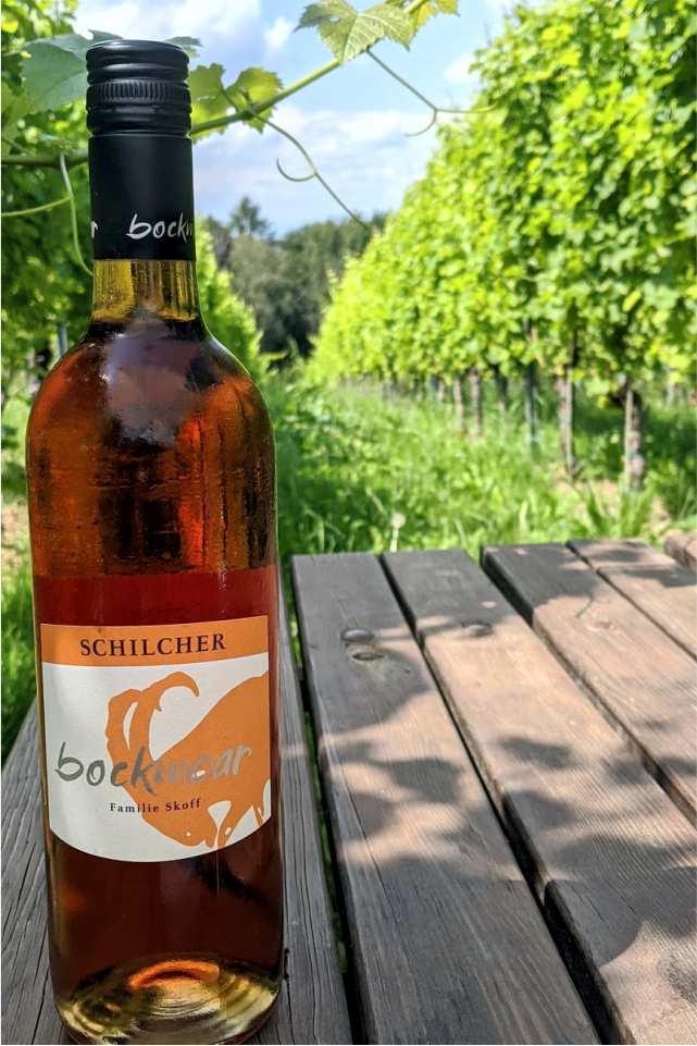 Bockmoar Buschenschank Gastgeber am Murradweg Ausflugsziel Wein